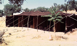 Abrahamu0027s tent like the Bedouin tents of today would be set up with its long sides facing east and west. In warm weather the whole eastern side of the ... & To The Ends Of The Earth--Sodom and Gomorrah